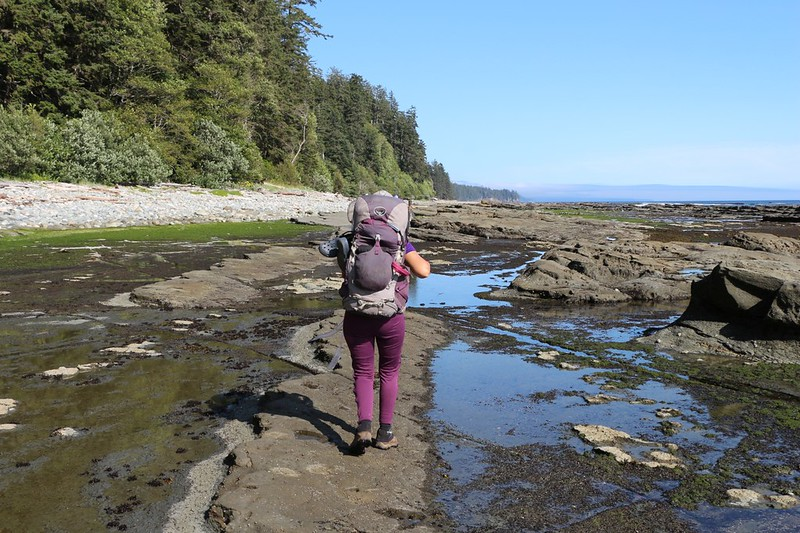 Walking out on the low-tide rock to avoid a bear on the beach near Michigan Creek on the West Coast Trail