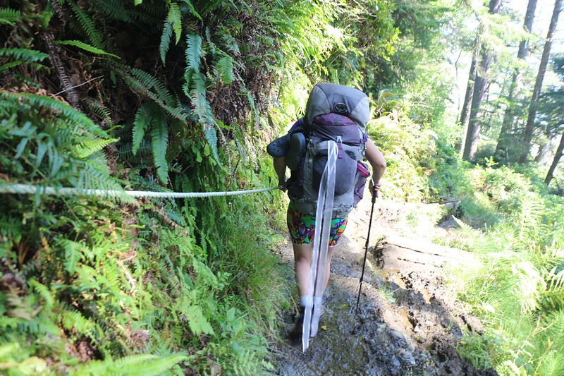As the West Coast Trail descended toward Michigan Creek, it got steep and muddy and a guide rope was needed