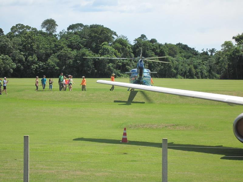 Iguaçu Parque Das Aves
