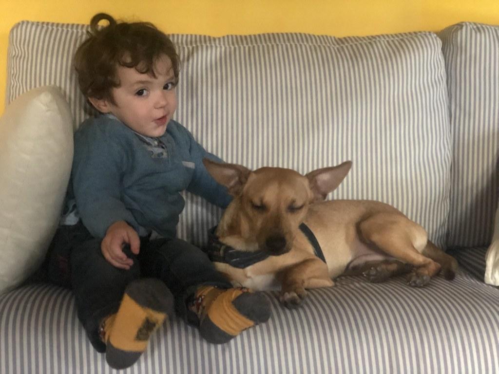 El apartamento de Palermo era TAN grande que pudimos convivir con nuestro amigo Nino y su perrito Zorongo. Una experiencia fantástica