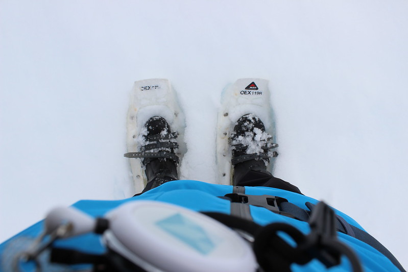 Supplied snow shoes
