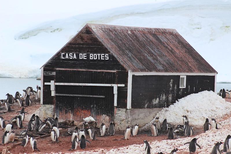 Gonzalez Videla Station