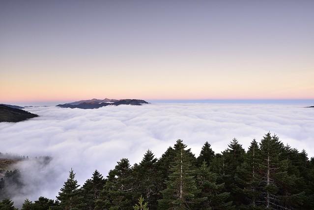 2019/11/30 @合歡山_Hehuanshan_Hehuan mountain_Taiwan