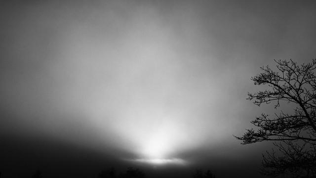 foggy Christmas