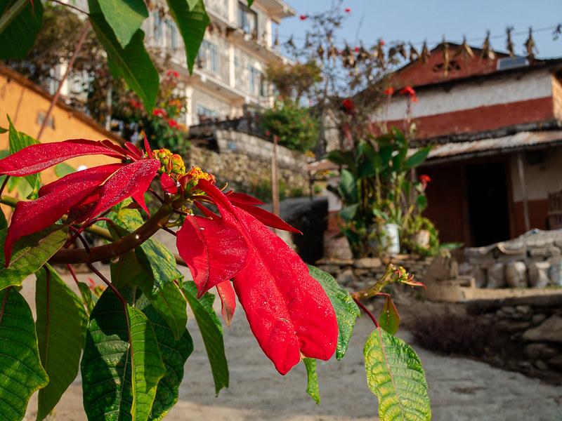 Soolomatka Nepaliin - Sarangkot