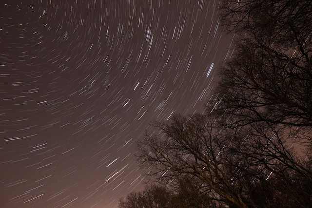 Christmas Day star trail over Westhouse Wood Nature Reserve