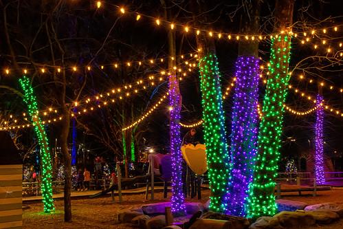 thegatheringplace punahou77 park christmas lights trees oklahoma tulsa stevejordan nikond500 nikon night roadtrip kids