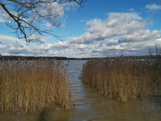Lake Balaton Minor on Boxing Day