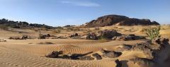 Mauritanie 2019 - Chaine de Zerga
