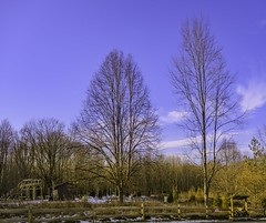 HiddenLake_20191222_01
