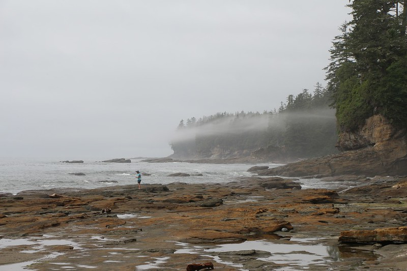 Looking north along the coast from the shore at Trestle Creek on the West Coast Trail