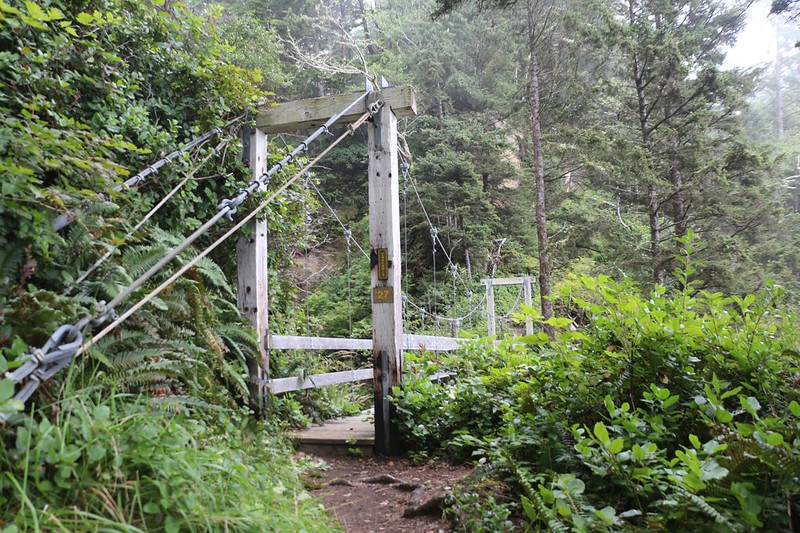 Suspension Bridge over Tsocowis Creek on the West Coast Trail