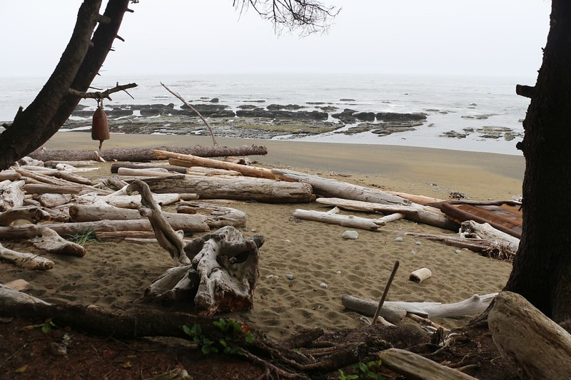 Campsites on the beach at the Tsocowis Creek Campground on the West Coast Trail