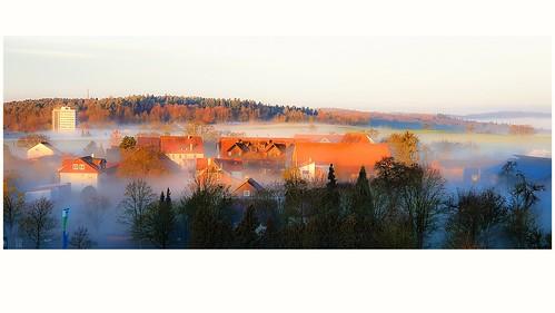 2019-12-26  8.45 a.m. Morning Light Photo. Rich  Rural Estate since 1105 anno Domino.