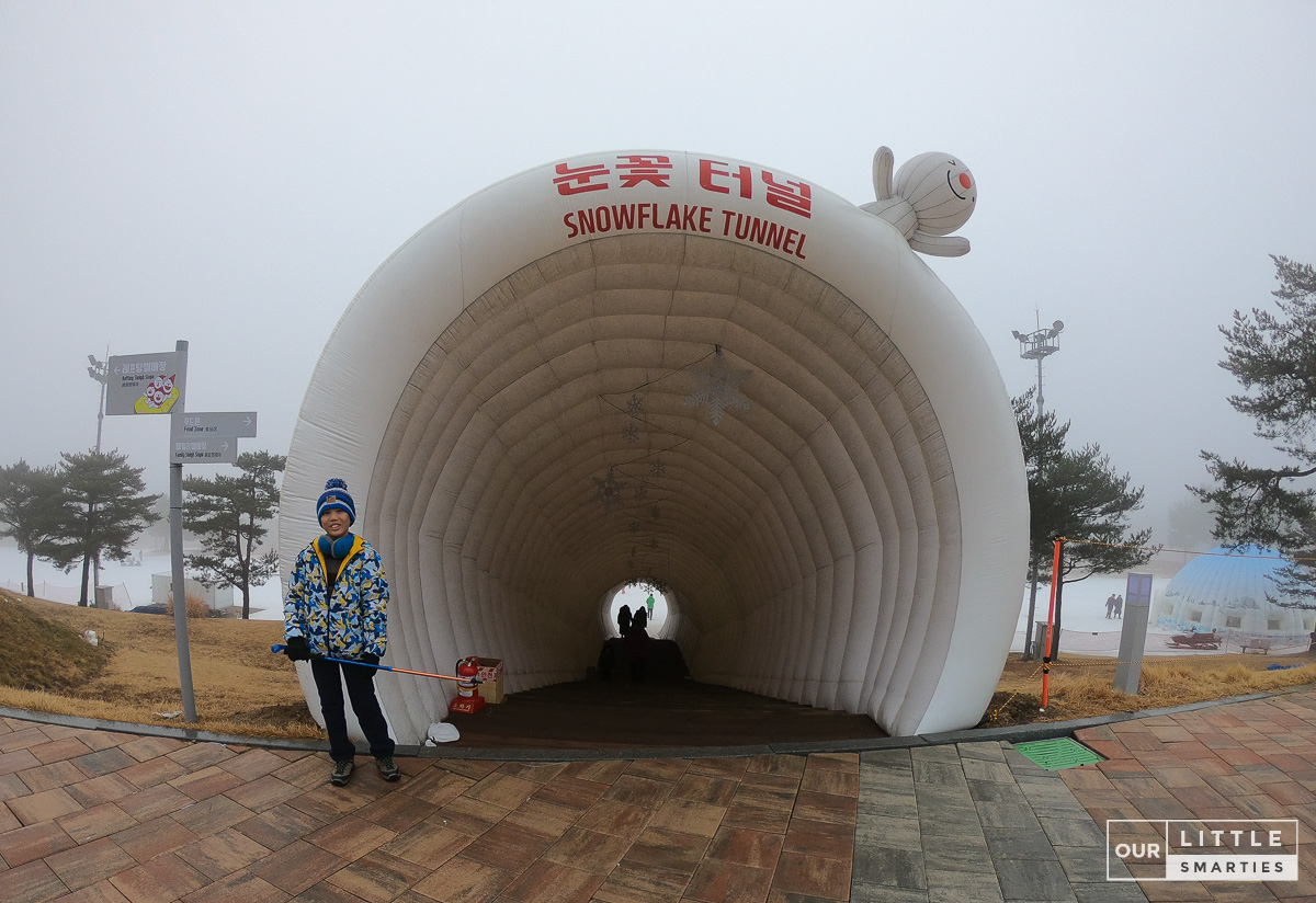 Snowflake Tunnel
