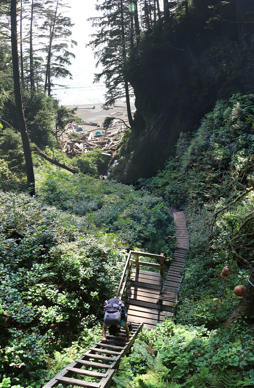There was a set of four long ladders leading down to the Tsusiat Falls Campsite