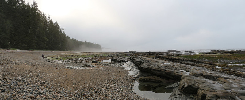 Foggy misty morning on the West Coast Trail along the shore just south of Darling River