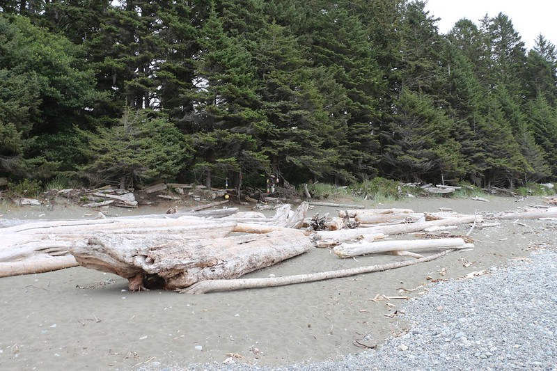 This is the Beach Access spot north of the Klanawa River - and the trail to reach the first Cable Car