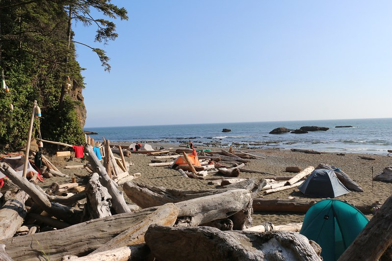 Plenty of tents set up on the beach at the Tsusiat Falls Campsite