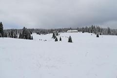 Sníh na českých horách