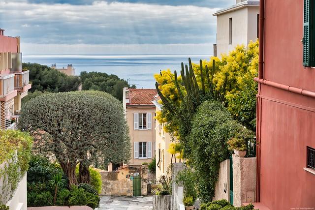 CAP-D'AIL vue sur mer - Côte d'Azur France  -3D0A4959
