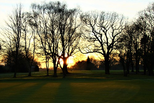 europe england cheshire nature sunset silhouettes simplysuperb trees winter beauty