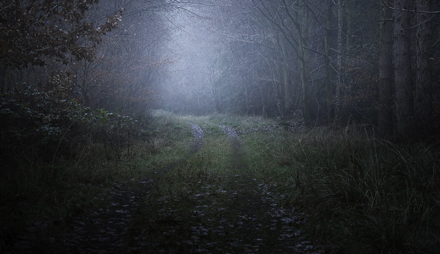Towards Twilight