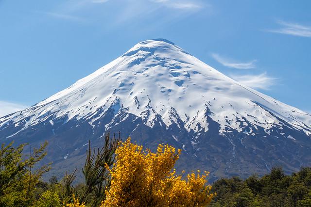 Osorno Volcano from Petrohué