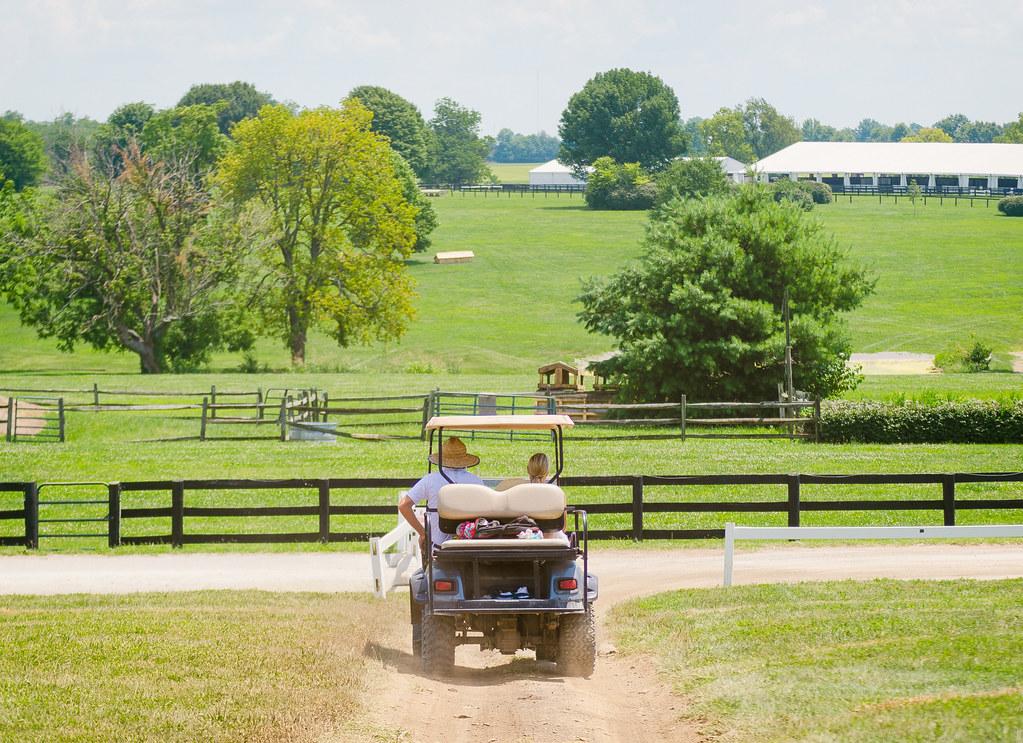 Venturing Into Kentucky Horse Park