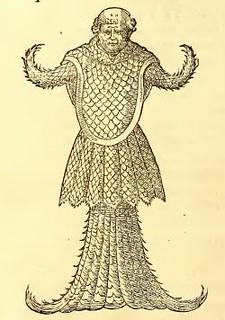 Il pesce monaco in un'immagine tratta da Libri de Piscibus Marinis di Guillaume Rondelet (1554)
