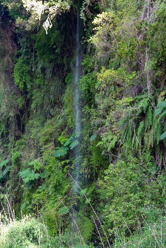faint falls on the way to Las Cascadas