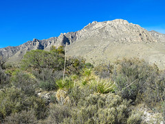 Guadalupe Mountains National Park (2 of 3)