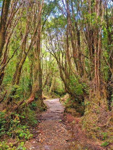 Saltos Rio Chaicas trail