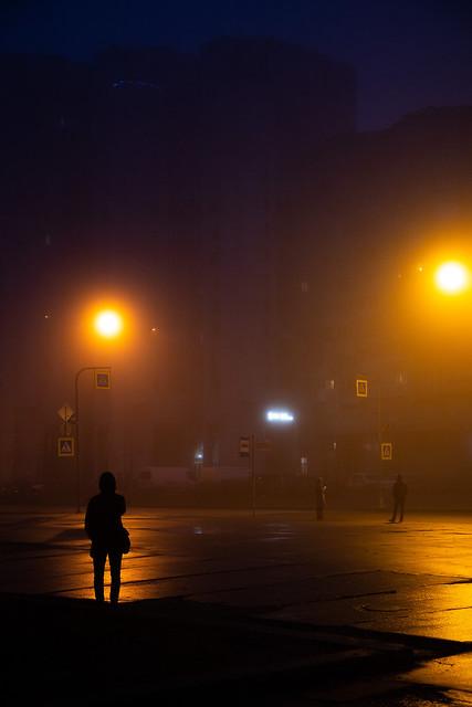 Foggy December morning in StPete