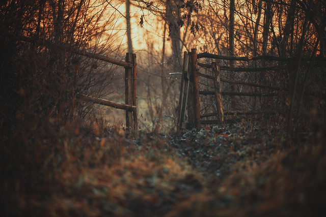 old gate...