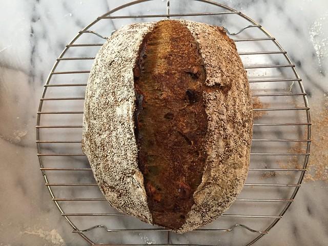 Matcha - Toasted walnut