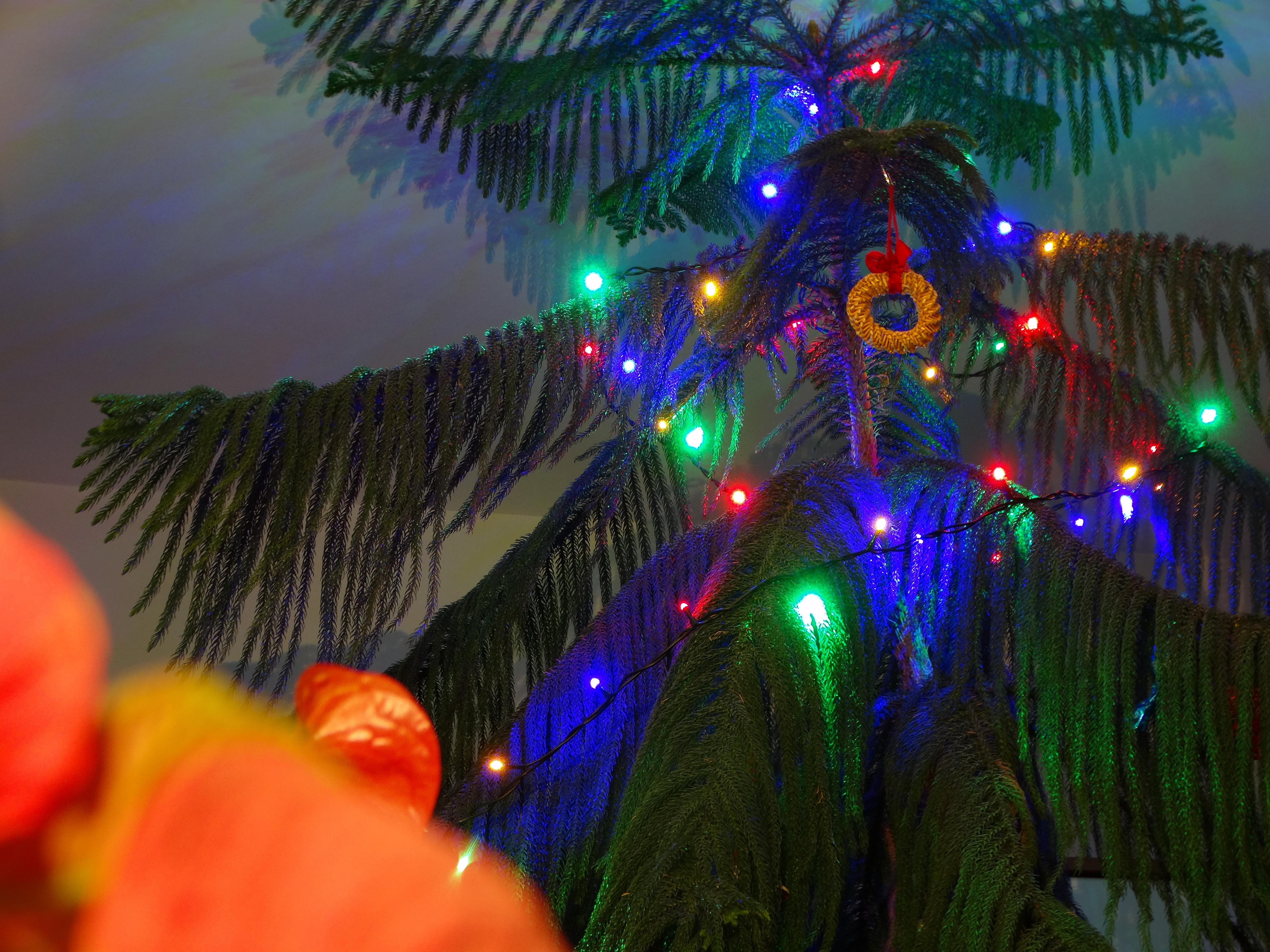 Karácsonyfa 2.