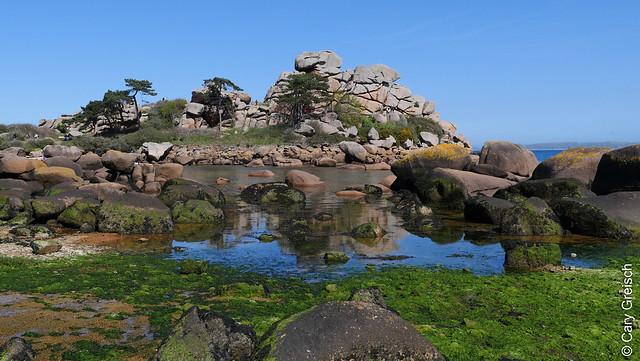 Porz Rolland, Grand Site Naturel de Ploumanac'h (Côtes-d'Armor, Bretagne) (16/04/2019 -39)