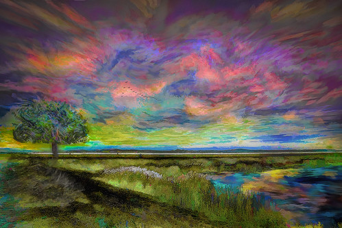 wildcat trail parker river wildlife refuge sunset sky tree colorful day digital flickr country bright happy colour scenic america world red nature blue white green art light sun cloud park landscape summer old new photoshop google bing yahoo stumbleupon getty national geographic creative composite manipulation hue pinterest blog twitter comons wiki pixel artistic topaz filter on1 sunshine image reddit tinder russ seidel facebook timber unique unusual fascinating
