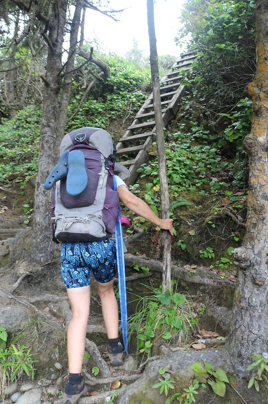 We have to climb yet more ladders to get overland to Nitinat Narrows