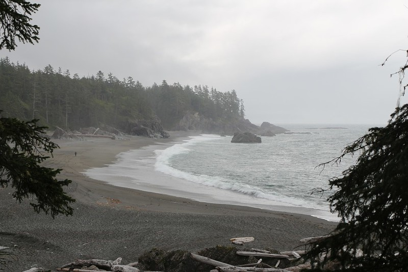A stretch of lonely beach in a cove just north of Nitinat Narrows