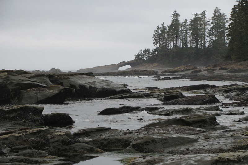 Looking north at Tsusiat Point over the low tide rocks