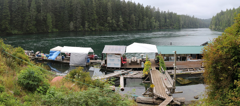The Crab Shack at Nitinat Narrows from the hill up above - the gill net is out for the first day of Salmon Season