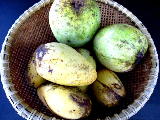 Mangoes from Peter & Lim