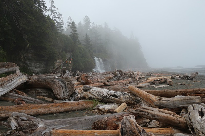 Looking at Tsusiat Falls across the soggy driftwood logs in the misty morning light on the West Coast Trail