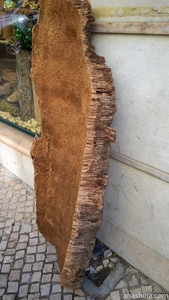 Древесина пробкового дуба