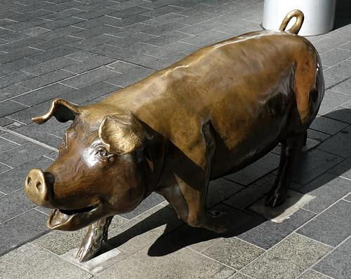 adelaide sculpture 006205 rx100m6 skulptur southaustralia australia rundlemall bronze outdoor outside pig schwein augusta adayout margueritederricourt smileonsaturday catchasmile