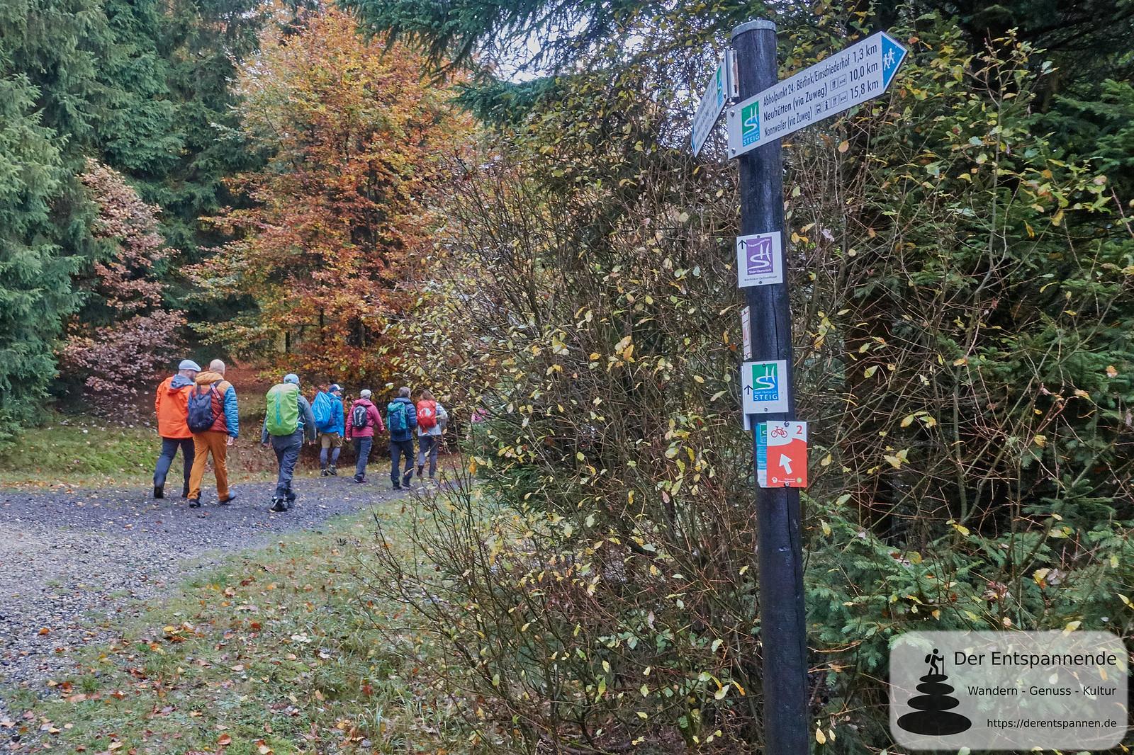 Saar-Hunsrück-Steig Etappe 10 von Börfink bis Hoxel, hier auch Börfinker Ochsentour