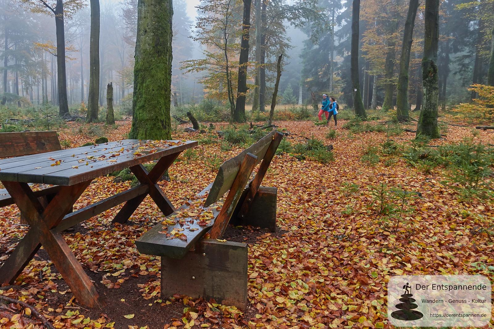 Saar-Hunsrück-Steig, Etappe 10