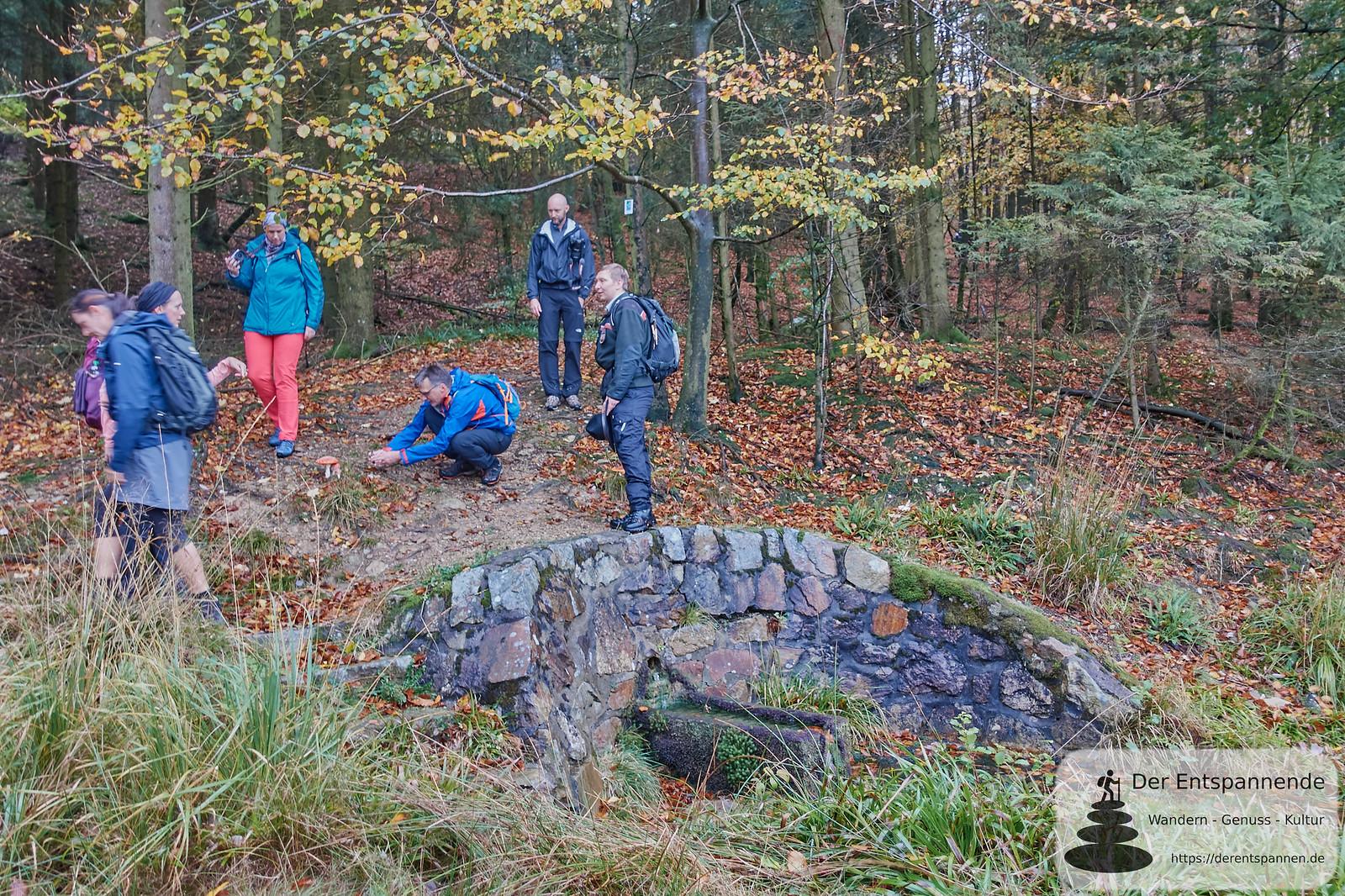 Die Siegfried-Quelle auf dem Saar-Hunsrück-Steig, Etappe 10